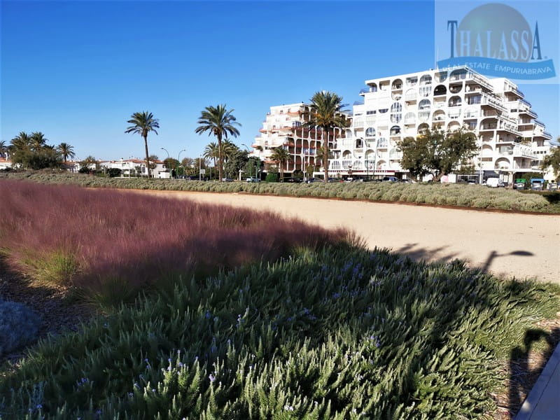 Flat with sea view - Salins area